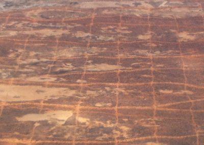 Gridlines, eastern Simpson Desert