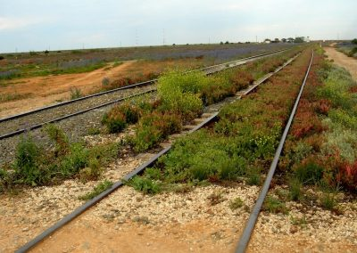 Indian Pacific railway line at Nullarbor
